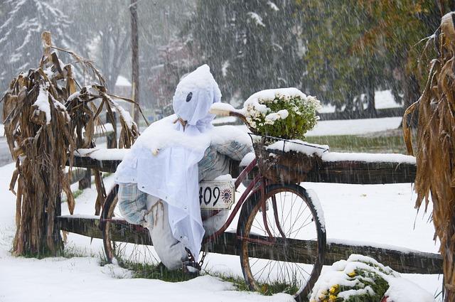 Straw Man, Scarecrow, Winter, Snow, Season, Fall
