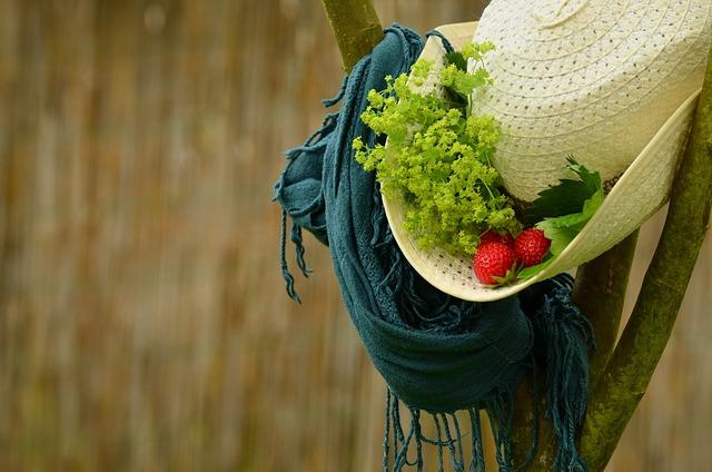 Hat, Summer, Straw Hat, Scarf, Strawberries