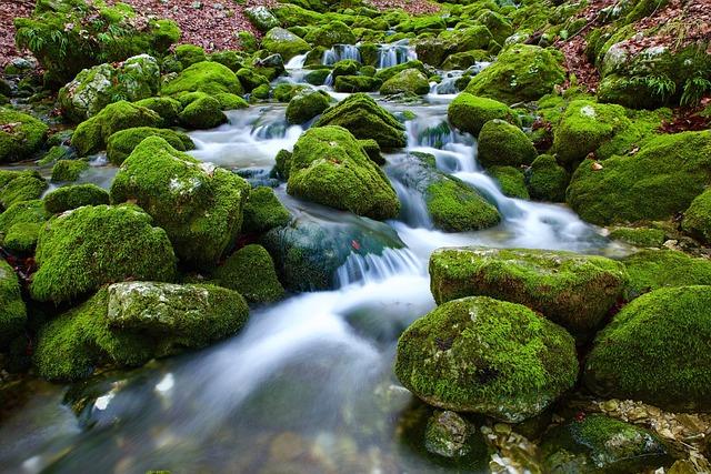 Source, Water, Torrent, Rock, Nature, Stream