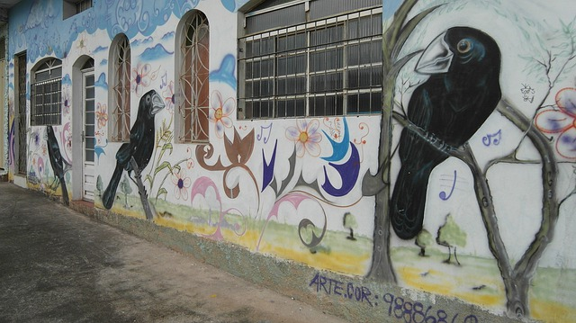 Mural, Graffiti, Street Art, Art, Wall, Bird, Brasil