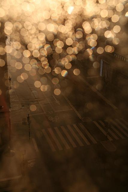 Rain, Light, Street, City, Pedestrian Crossing, Evening