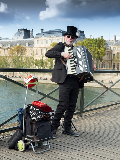 Musician, Street, Paris, Accordion, Music, People, Work