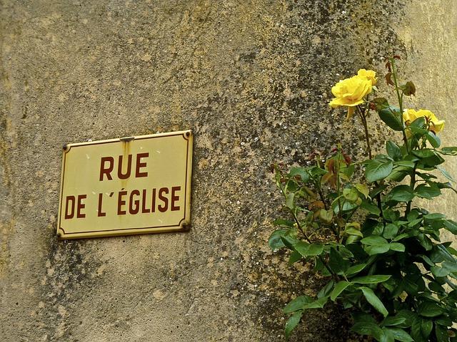 Sign, Flower, Street, Wall, Symbol, Blossom, Urban