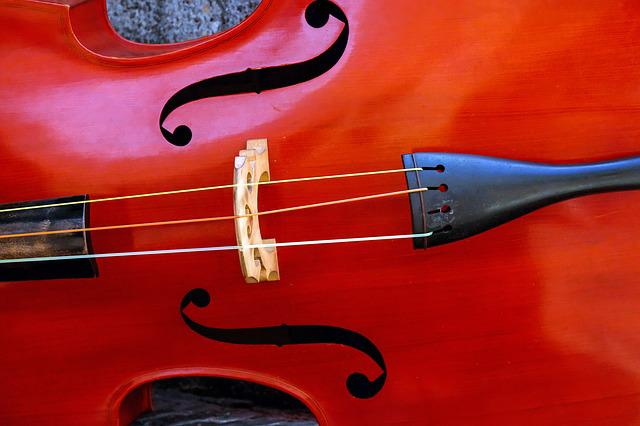 Violin, Music, Instrument, Stringed Instrument, String