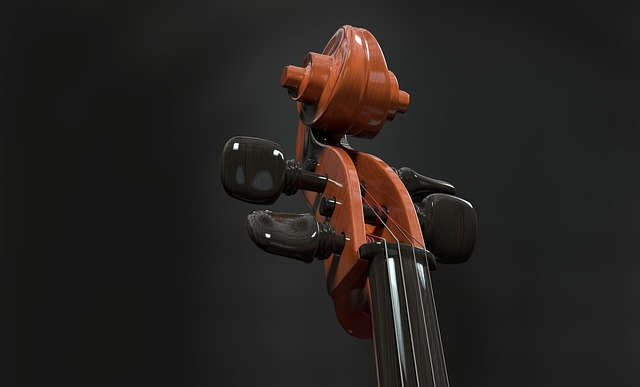 Cello, Strings, Stringed Instrument, Detail, Neck