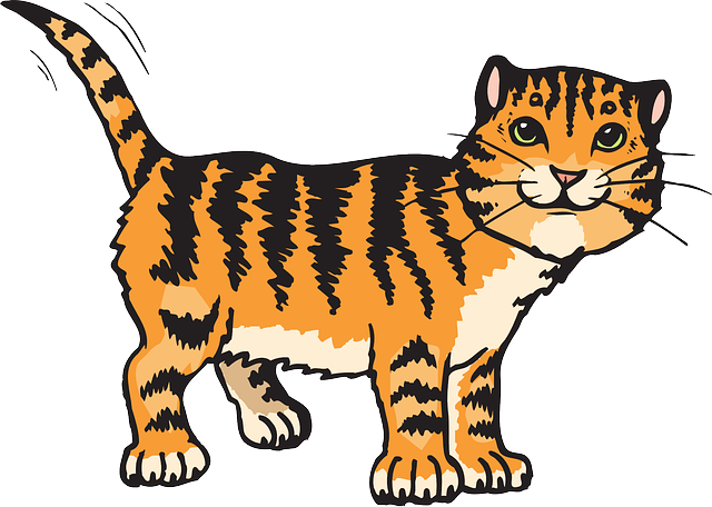 Cat, Stripes, Tiger, Animal, Tail, Whiskers, Striped