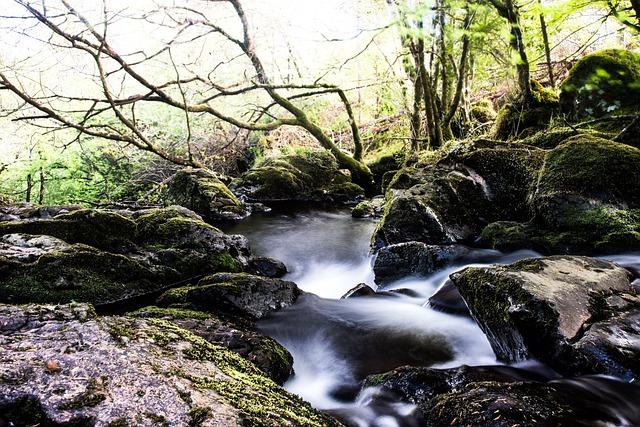 Bach, River, Tourmakeady, Waterfall, Stroemumg, Forest