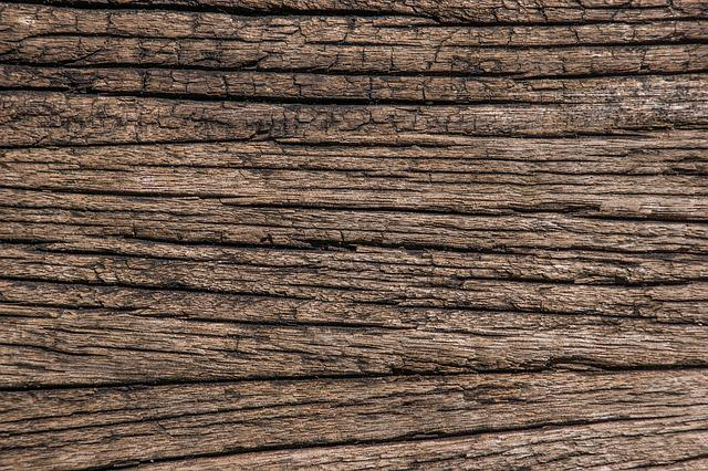 Free Photo Structure Old Texture Veins Wood Ancient Oak