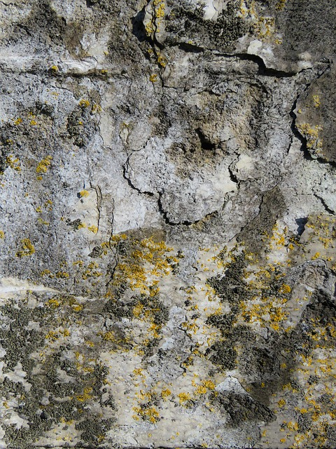 Texture, Background, Wall, Plaster, Structure, Weave