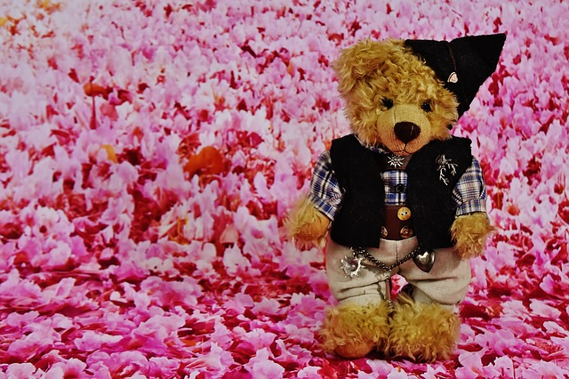 Teddy, Costume, Flowers, Soft Toy, Stuffed Animal, Cute