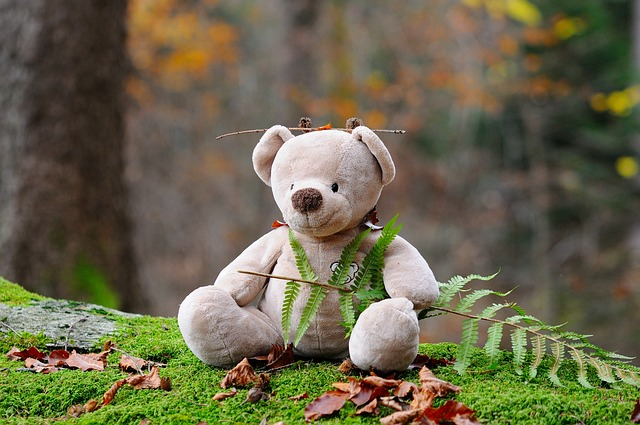 Teddy Bear, Bear, Children Toys, Forest, Stuffed Animal