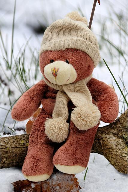 Bear, Bears, Teddy, Plush, Teddy Bear, Stuffed Animal