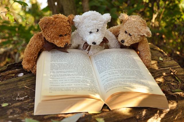 Teddy Bear, Teddy, Bear, Stuffed Animal, Animal
