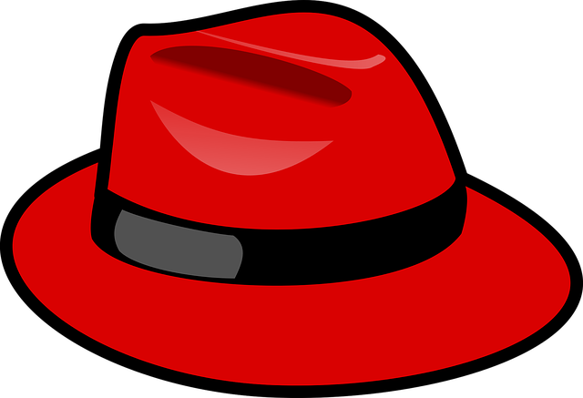 Red Hat, Fedora, Fashion, Style, Headgear, Stylish