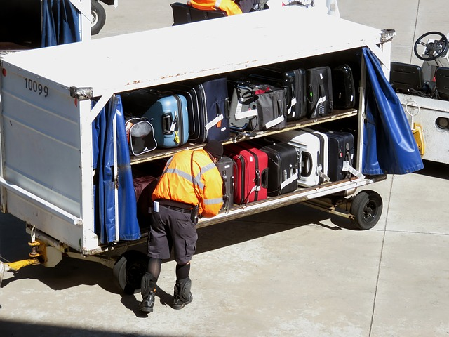 Baggage, Travel, Luggage, Trip, Journey, Suitcase