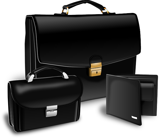 Briefcase, Purse, Suitcase, Portfolio, Attache Case