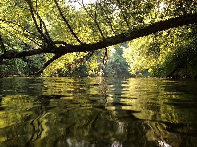 Styria, Judenburg, Mur, Water, River, Bank, Summer