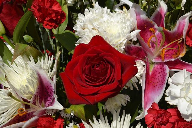 Flowers, Flora, Summer, Roses, Bouquet, Beautiful