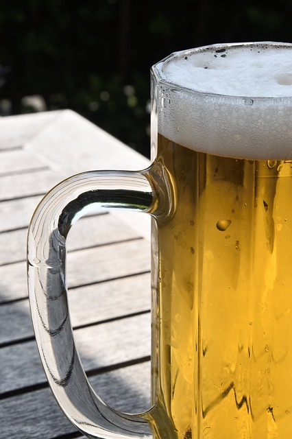 Beer, Beer Mug, Summer, Glass