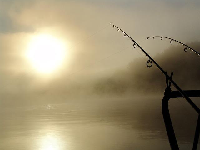 Fishing, Summer, Drava, Dawn