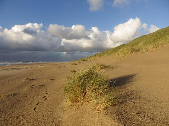 Sea, Summer, Vacations, Beach, Dunes, North Sea