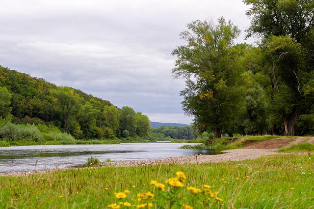 Nature, Landscape, Water, Grass, Summer, River, Tree