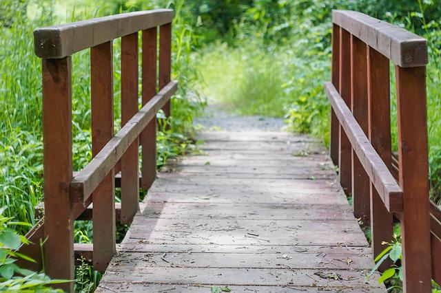 Footbridge, Bridge, Wooden Bridge, Summer, Green