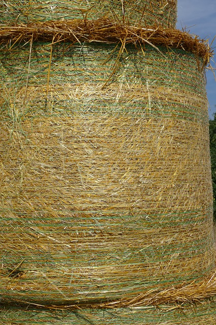 Straw Bales, Summer, Nature, Harvest, Agriculture