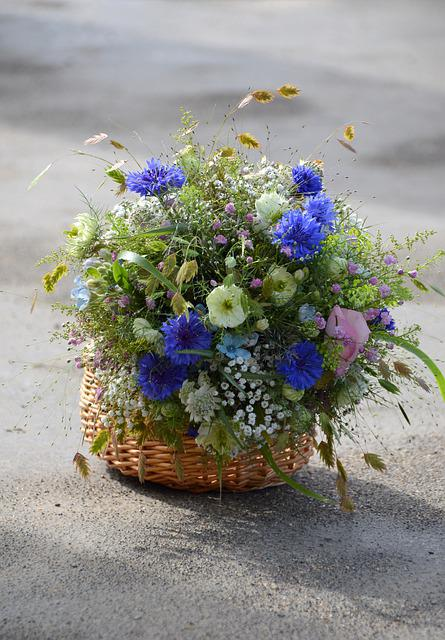 Flower, Nature, Plant, Leaf, Summer, Floral, Bouquet