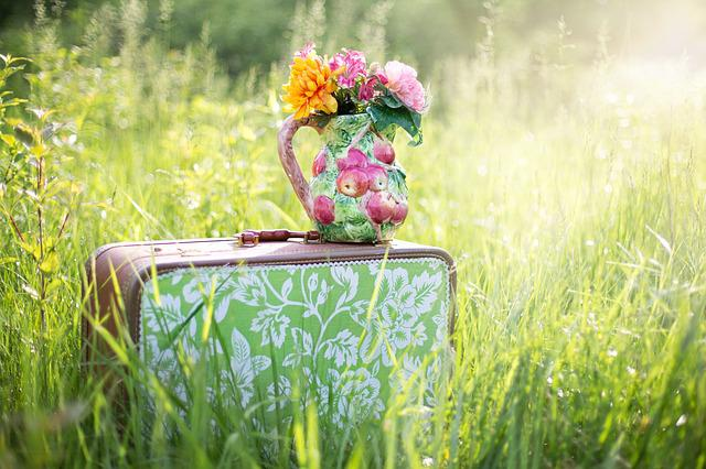 Summer Still-life, Suitcase In Field, Grass, Summer