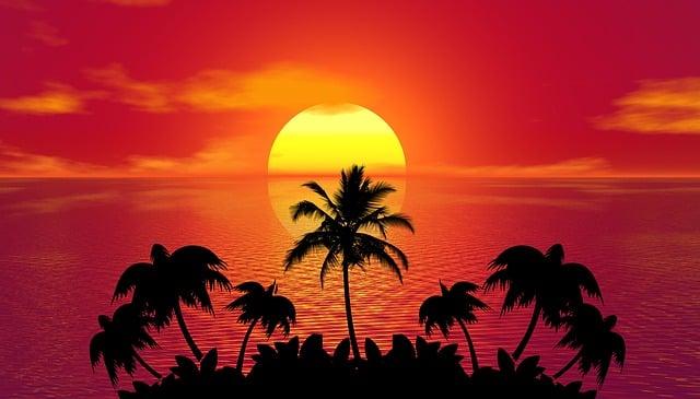 Tropical, Summer, Sunset, Beach, Palm Trees, Island