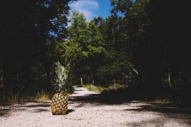 Pineapple, Summertime, Summer, Summer Vibes, Fruit
