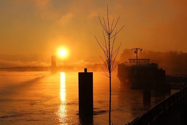 Fog, Mood, Sun, Morgenstimmung, Rhône, Mystical
