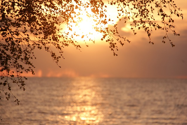 Sun, Gulf Of Finland, Landscape, St Petersburg Russia
