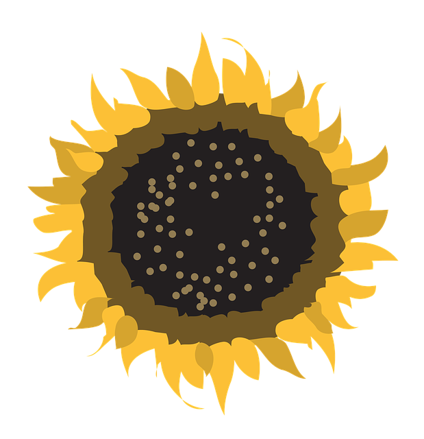 Flower, Symbol, Sun, Nature, Design, Sign, Natural