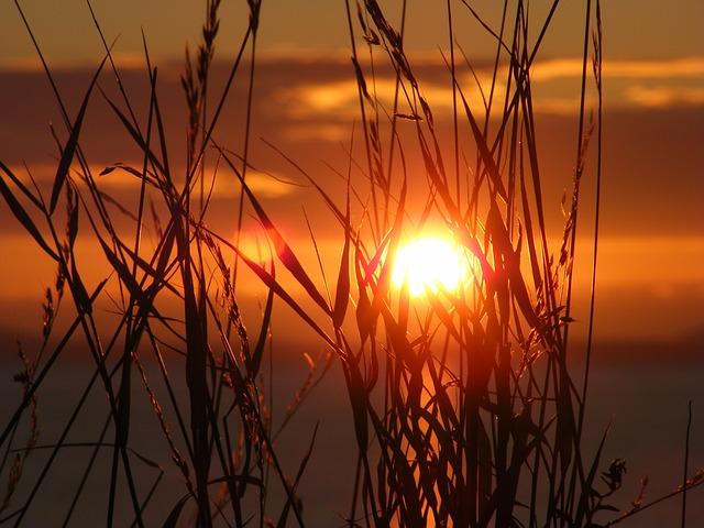 Sunset, Scenic, Sky, Sun, Summer, Nature, Light