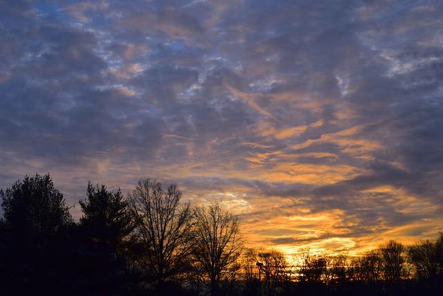 Sunset, Landscape, Trees, Clouds, Sky, Outdoors, Sun
