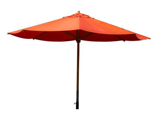 Screen, Sun Protection, Rain Protection, Parasol