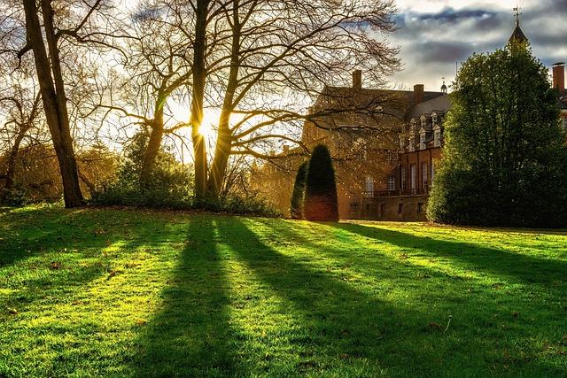 Park, Castle Park, Trees, Sun, Backlighting, Shadow