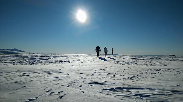 Winter, Snow, People Walking, Sun, Landscape, Season