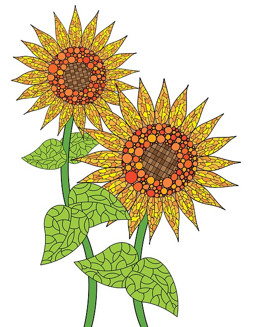 Sunflowers, Flower, Bloom, Nature, Outdoor, Leaves