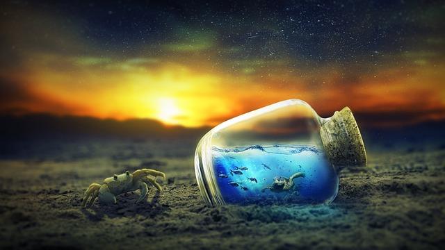Nature, Sky, Water, Landscape, Sun, Crab, Sea, Sunlight