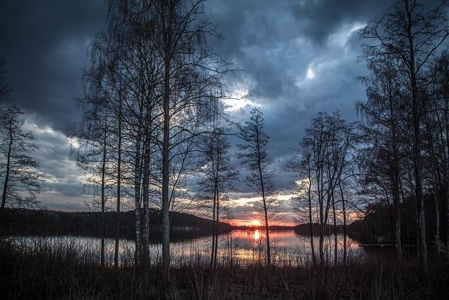 Lake, Trees, Sunset, Sun, Sunlight, Reflection, Water