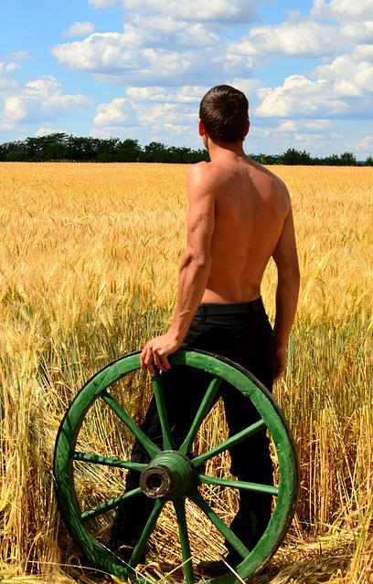 Young Men, Peasant Carts, Wheat, Sunlight, Summer