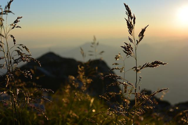 Sunrise, Unterberg, Salzburg, Austria, Alpine, Mountain