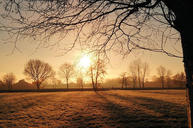 Sunrise, Cold, Iced, Hoarfrost, Morgenstimmung, Winter