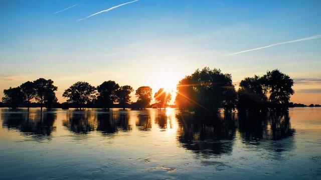 High Water, Trees, Sunrise, Sky, Blue Sky, Landscape