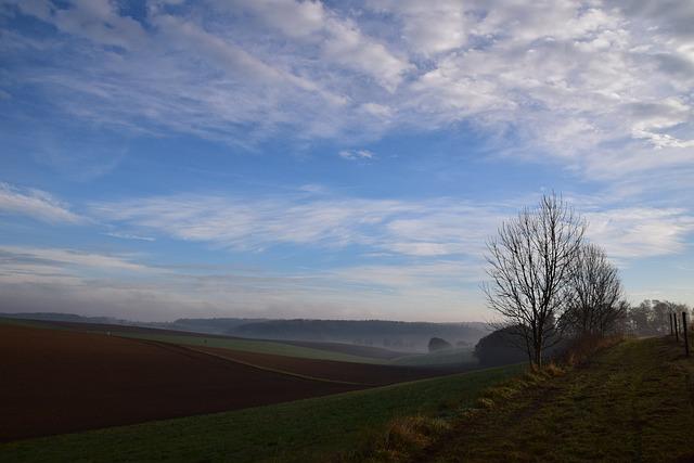 Sunrise, Morning, Sun, Mood, Sky, Morgenstimmung, Fog