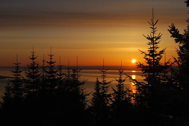 Sunrise, St Lawrence River, Boreal Forest