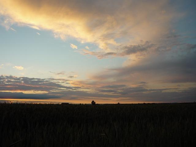Badajoz, Field, Sky, Clouds, Nature, Sunset, Horizon